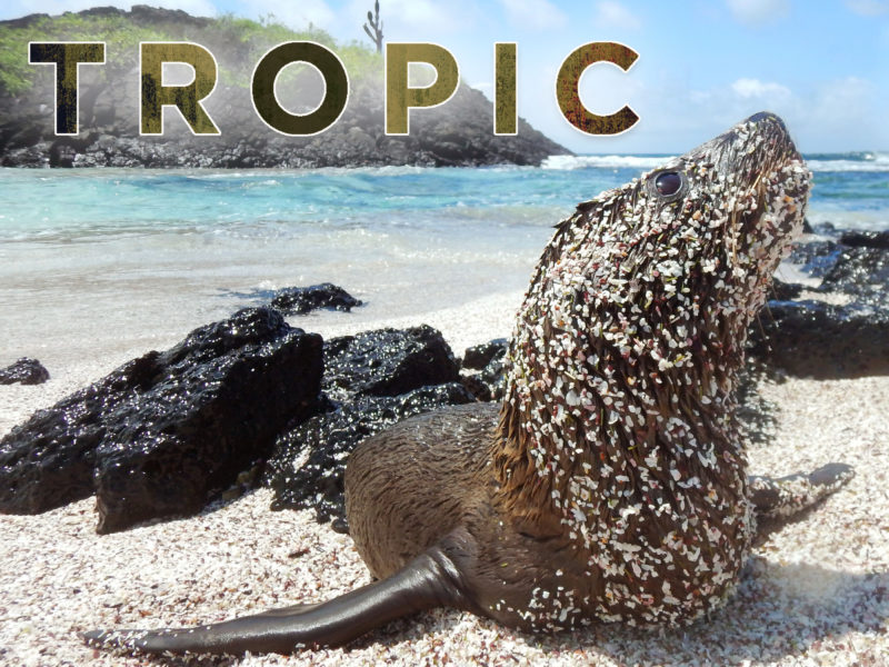 Tropic Journeys in Nature